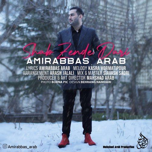 دانلود موزیک جدید امیرعباس عرب شب زنده داری